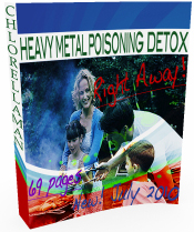 Heavy Metal Poisoning Detox Right Away